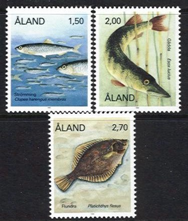 1990 Fishes