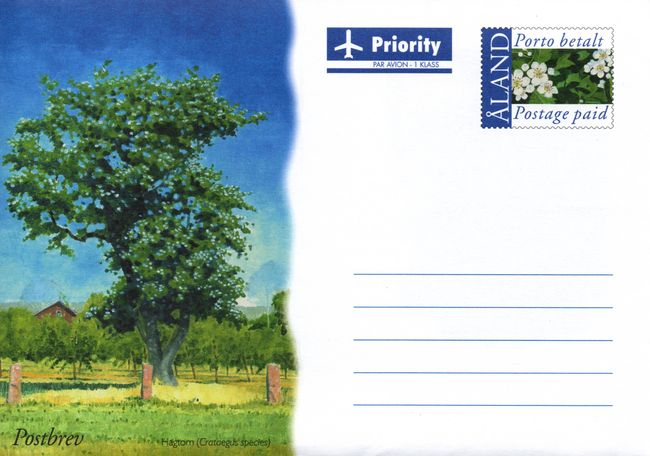 2003 Hawthorn Tree Postal Stationary