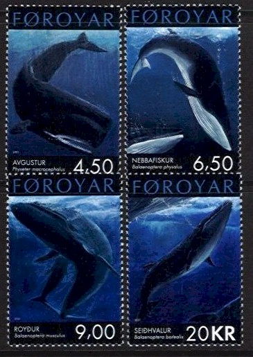 2001 Whales