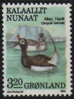 3.20 Kr Long Tailed Ducks
