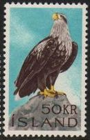 1966 White-Tailed Sea Eagle