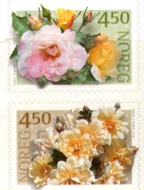 2001 Roses (1st series)